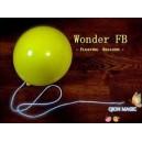 Wonder Floating Balloon