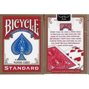 Jeu Bicycle rider back nouveau modèle