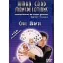 DVD Jumbo Card Manipulations