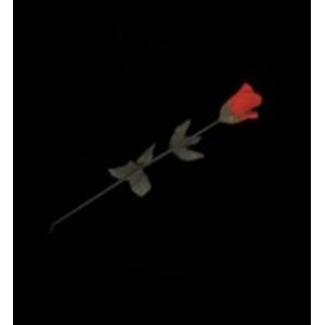 Rose à Apparition